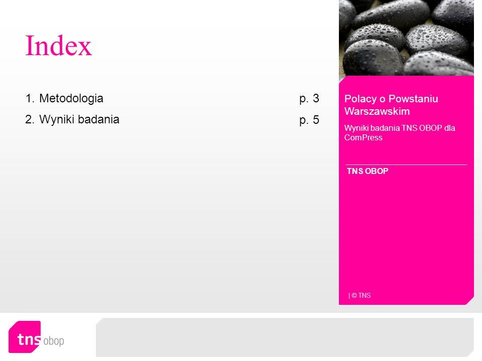Index Metodologia p. 3 Wyniki badania p. 5