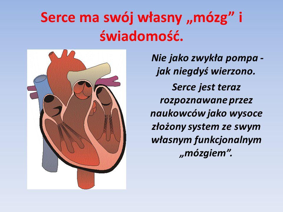 """Serce ma swój własny """"mózg i świadomość."""