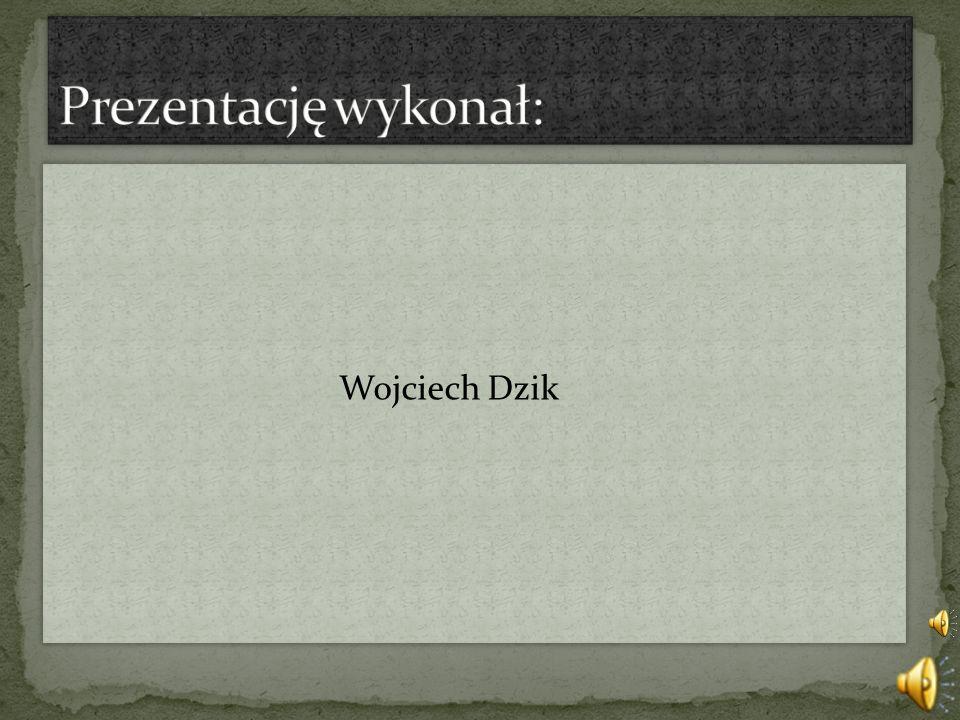 Prezentację wykonał: Wojciech Dzik