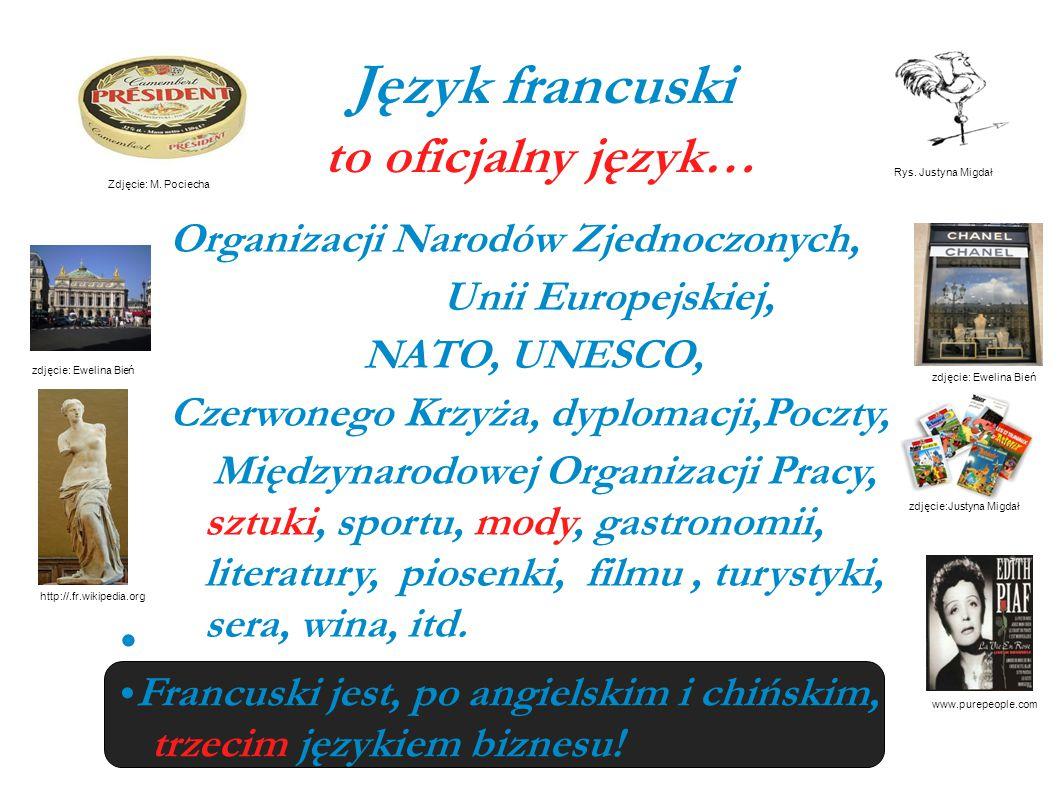 Język francuski to oficjalny język… Organizacji Narodów Zjednoczonych,