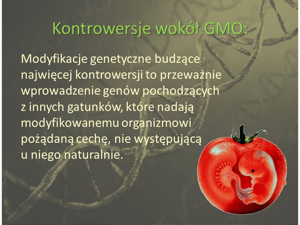 Kontrowersje wokół GMO: