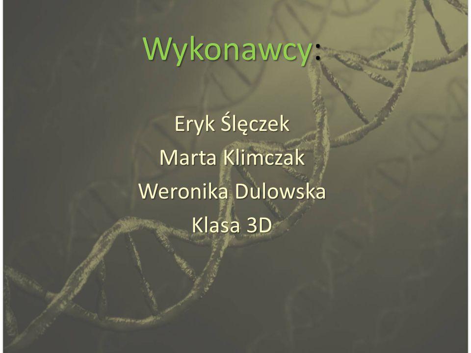 Wykonawcy: Eryk Ślęczek Marta Klimczak Weronika Dulowska Klasa 3D