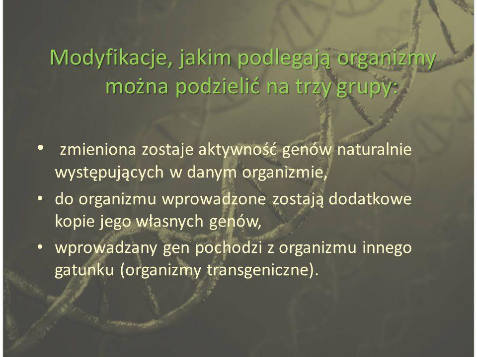 Modyfikacje, jakim podlegają organizmy można podzielić na trzy grupy: