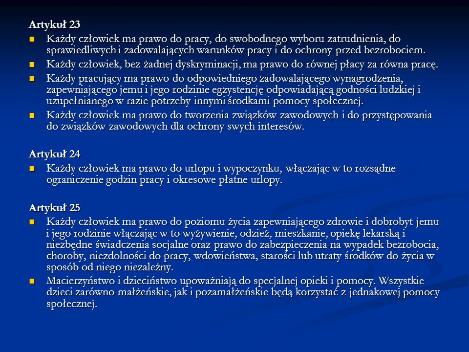 Artykuł 23