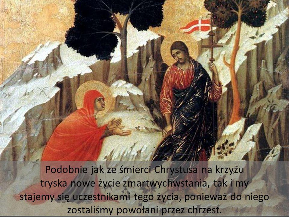 Podobnie jak ze śmierci Chrystusa na krzyżu tryska nowe życie zmartwychwstania, tak i my stajemy się uczestnikami tego życia, ponieważ do niego zostaliśmy powołani przez chrzest.