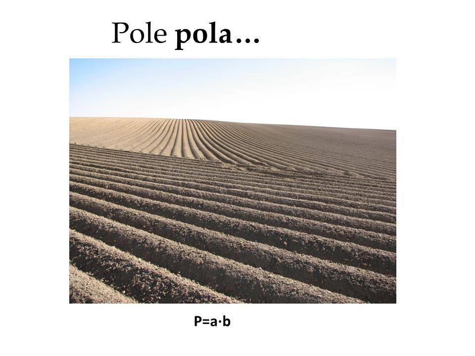 Pole pola… P=a∙b