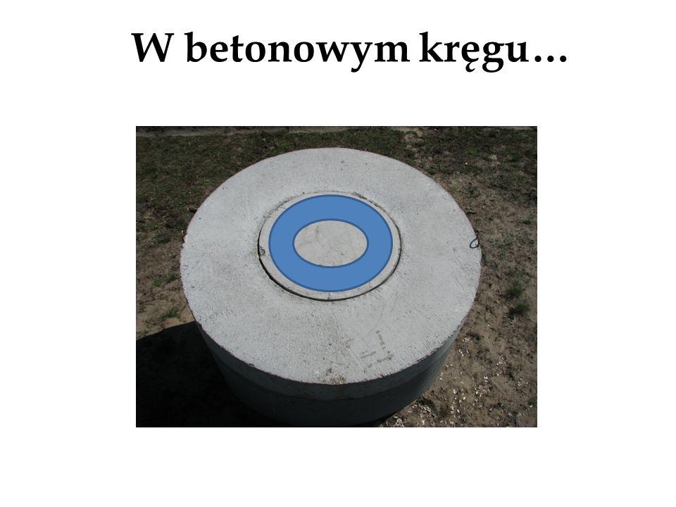 W betonowym kręgu… Pierścień kołowy