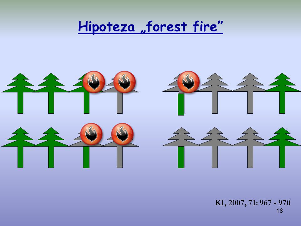 "Hipoteza ""forest fire"