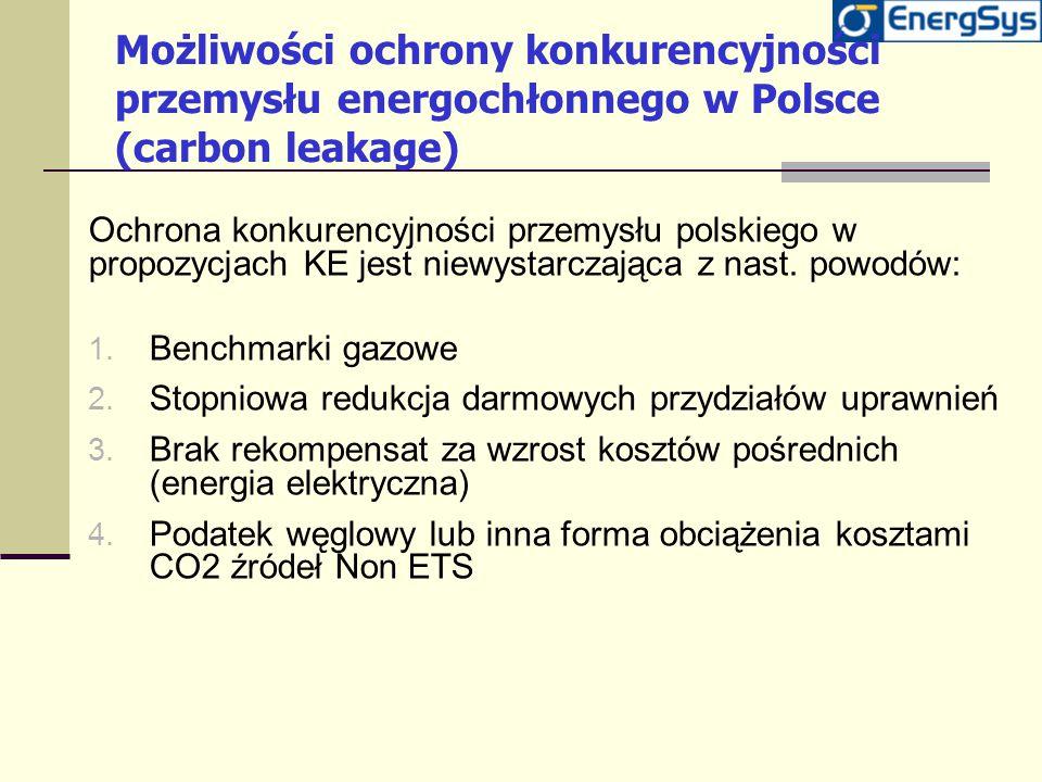 Możliwości ochrony konkurencyjności przemysłu energochłonnego w Polsce (carbon leakage)