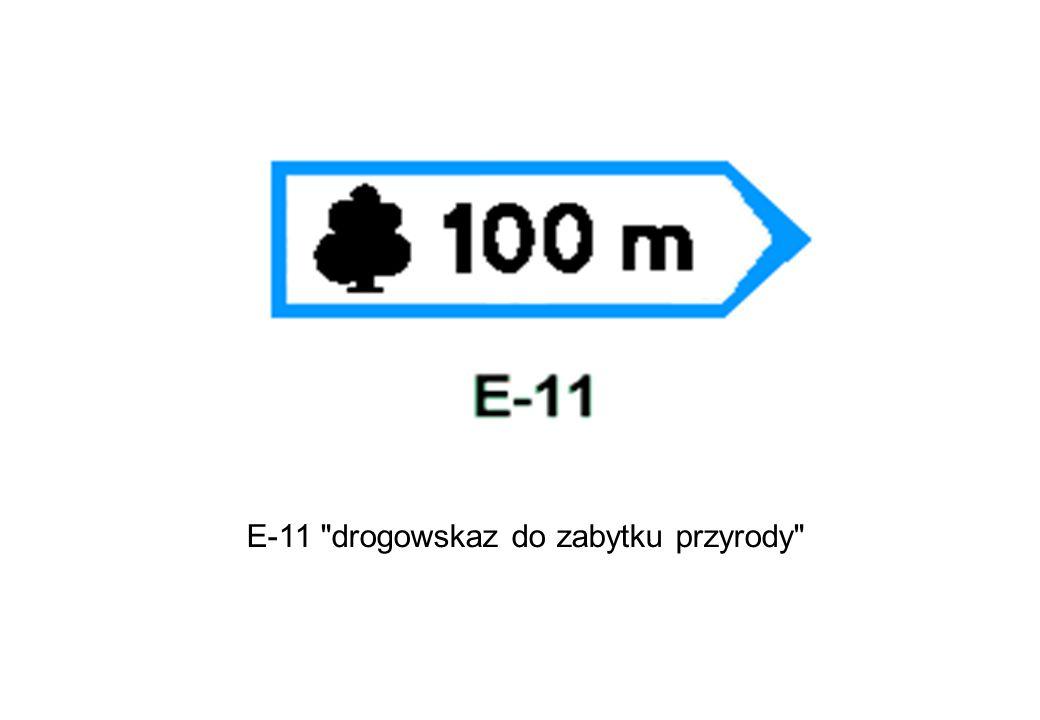 E-11 drogowskaz do zabytku przyrody