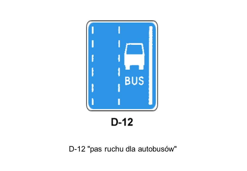 D-12 pas ruchu dla autobusów