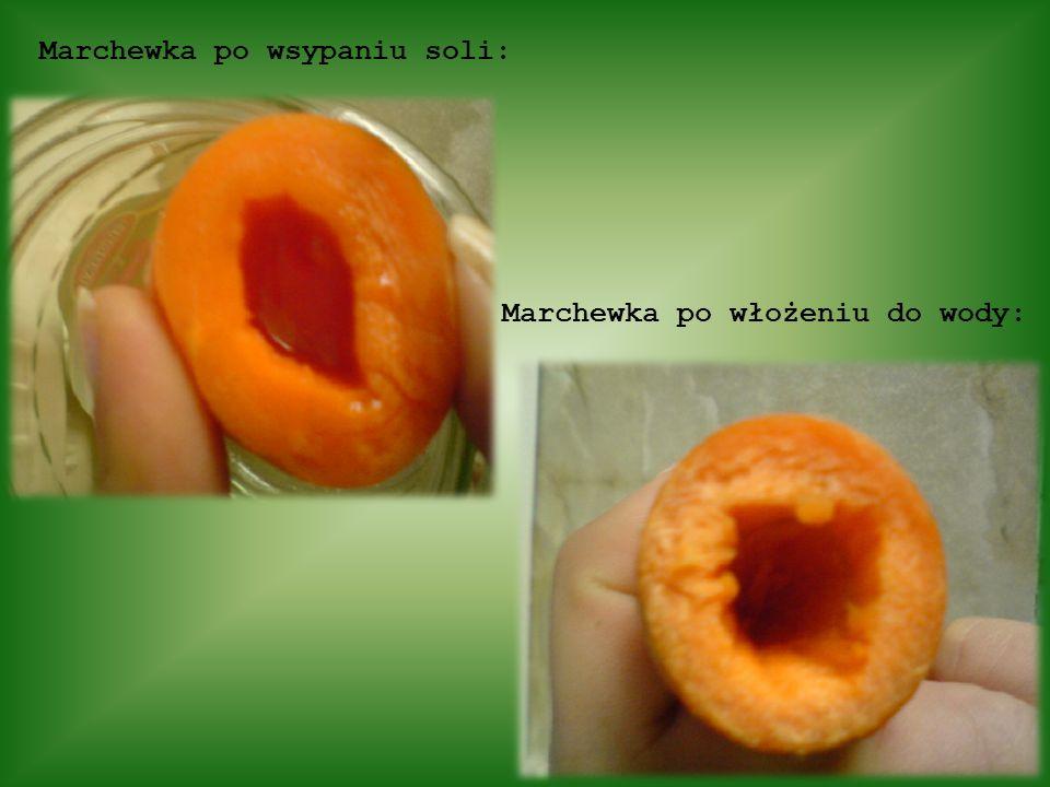 Marchewka po wsypaniu soli:
