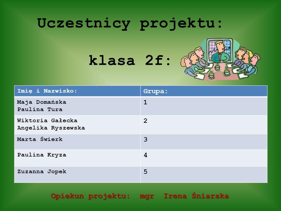 Uczestnicy projektu: klasa 2f:
