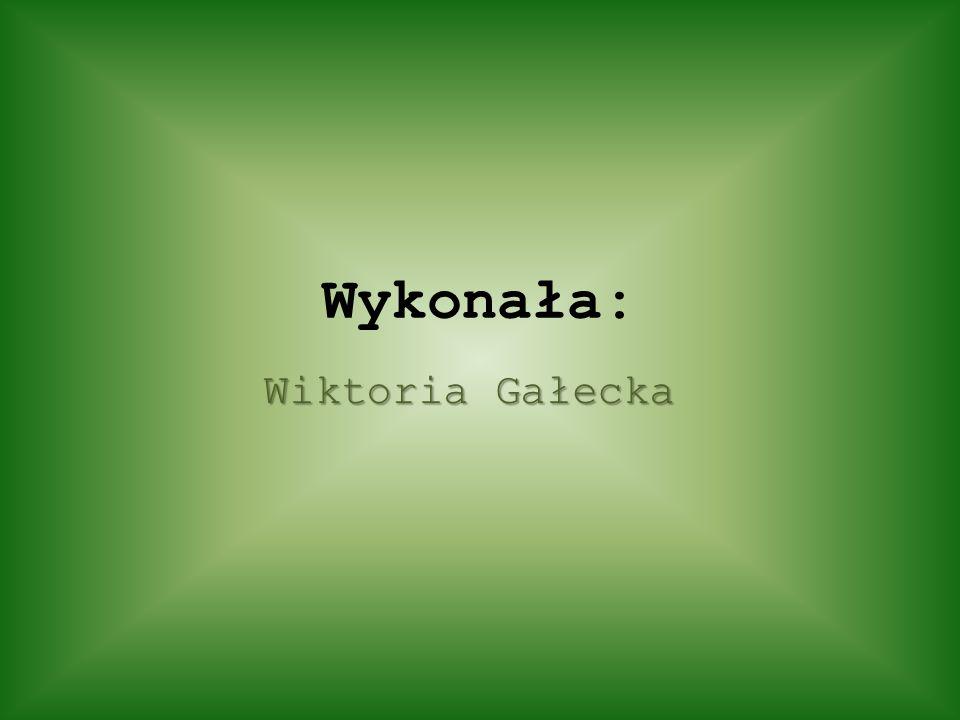 Wykonała: Wiktoria Gałecka