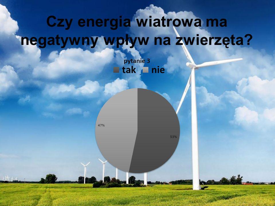 Czy energia wiatrowa ma negatywny wpływ na zwierzęta