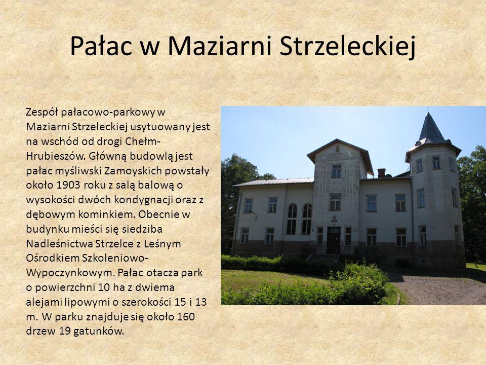 Pałac w Maziarni Strzeleckiej