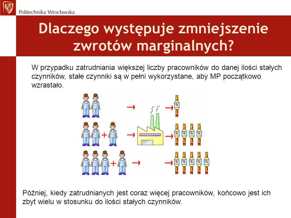 Dlaczego występuje zmniejszenie zwrotów marginalnych