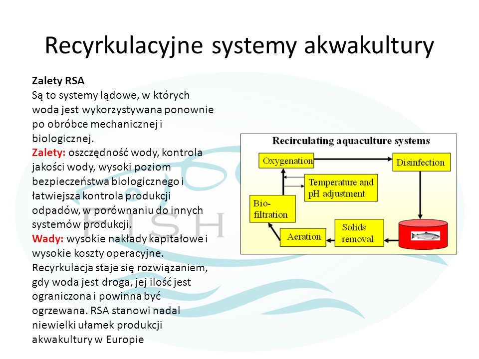 Recyrkulacyjne systemy akwakultury