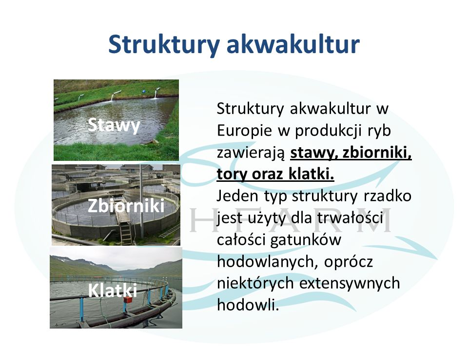 Struktury akwakultur Stawy Zbiorniki Klatki