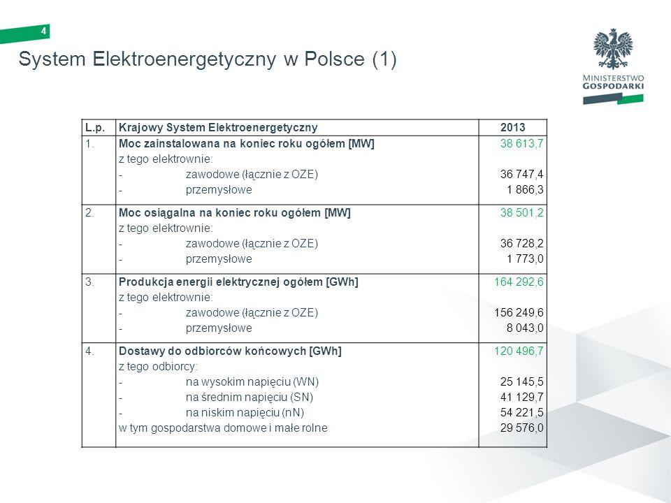 System Elektroenergetyczny w Polsce (1)