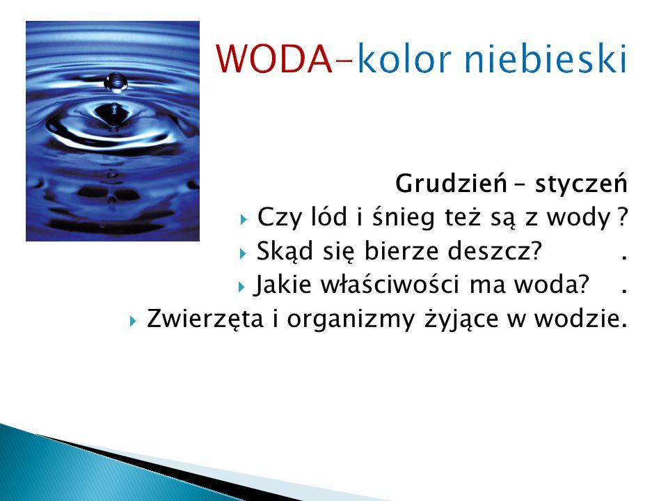 WODA-kolor niebieski Grudzień – styczeń