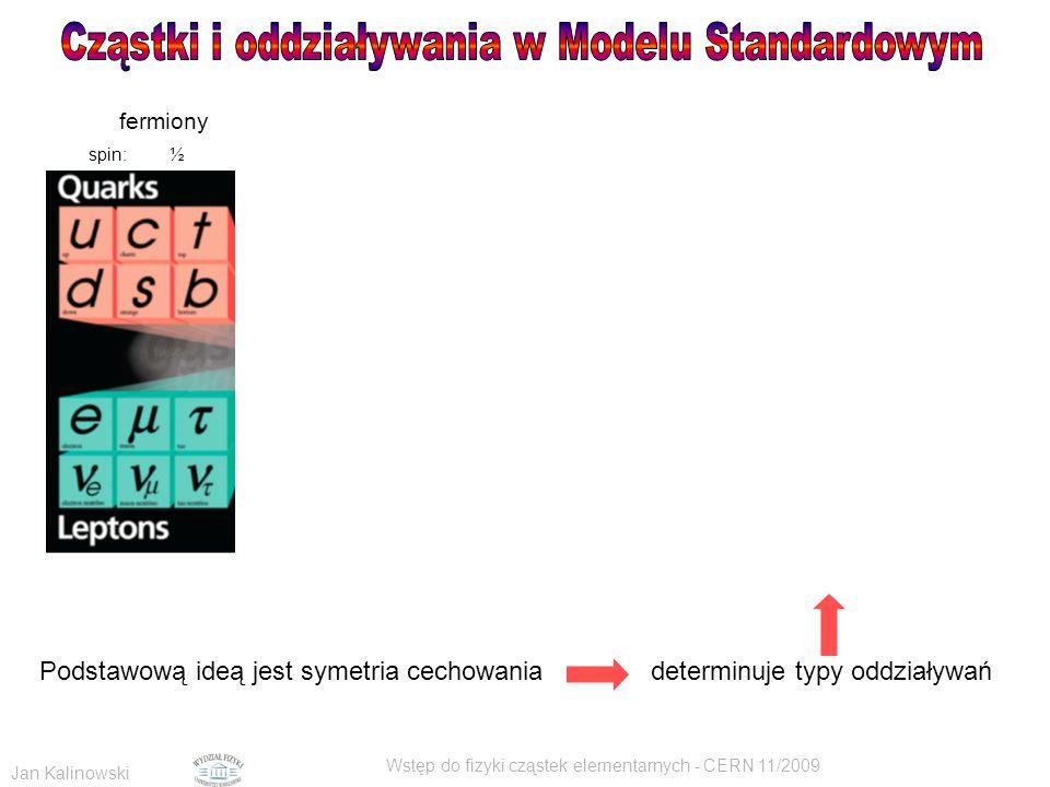 Cząstki i oddziaływania w Modelu Standardowym