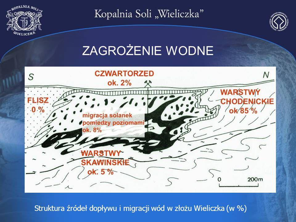 ZAGROŻENIE WODNE Struktura źródeł dopływu i migracji wód w złożu Wieliczka (w %)