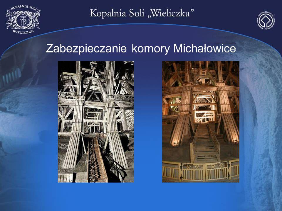 Zabezpieczanie komory Michałowice