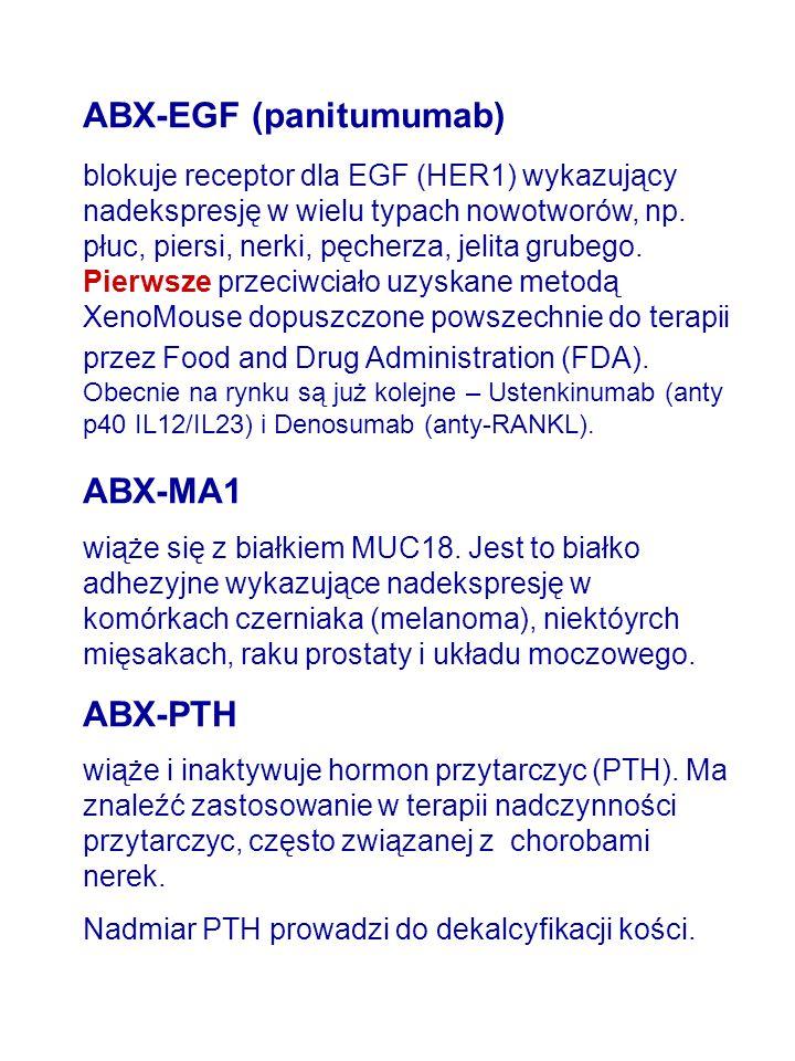ABX-EGF (panitumumab)