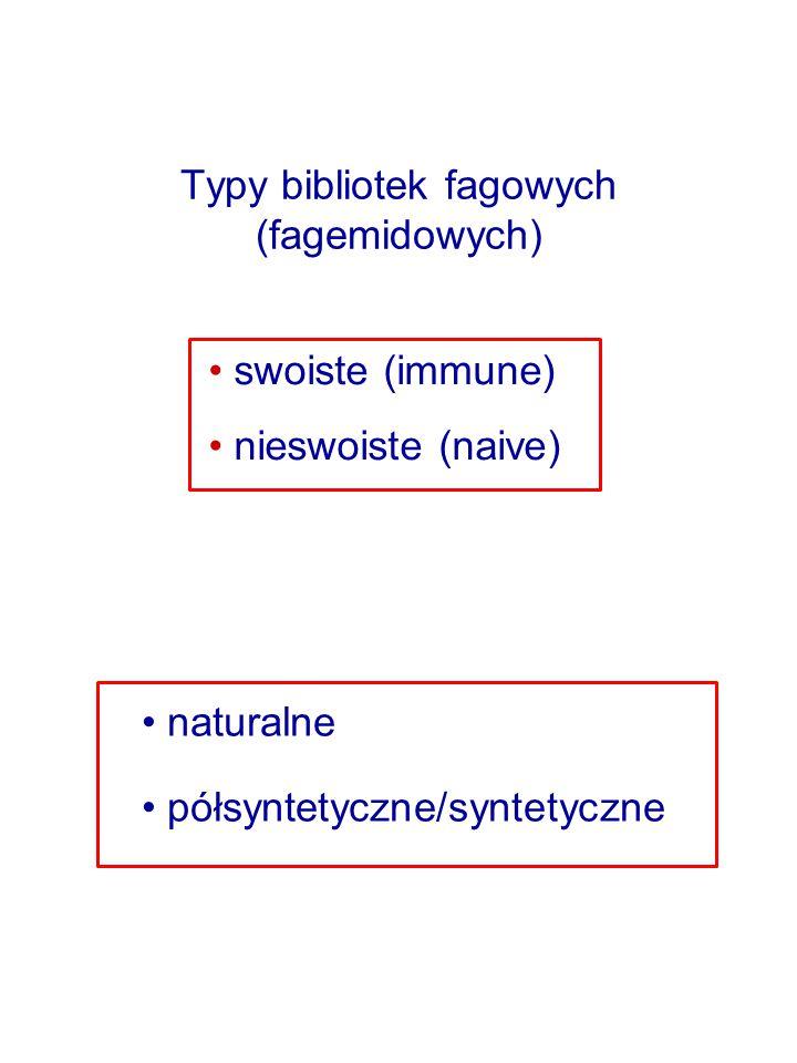 Typy bibliotek fagowych (fagemidowych)