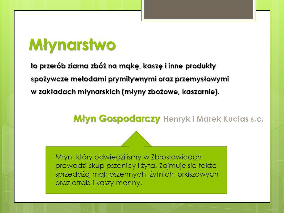 Młynarstwo Młyn Gospodarczy Henryk i Marek Kucias s.c.