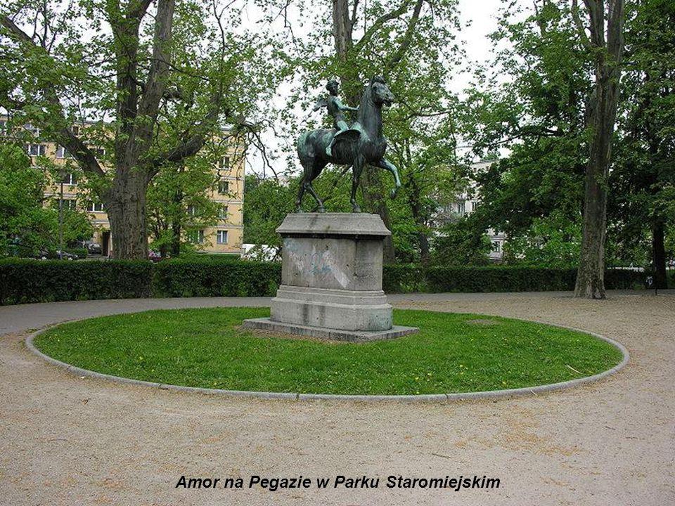 Amor na Pegazie w Parku Staromiejskim
