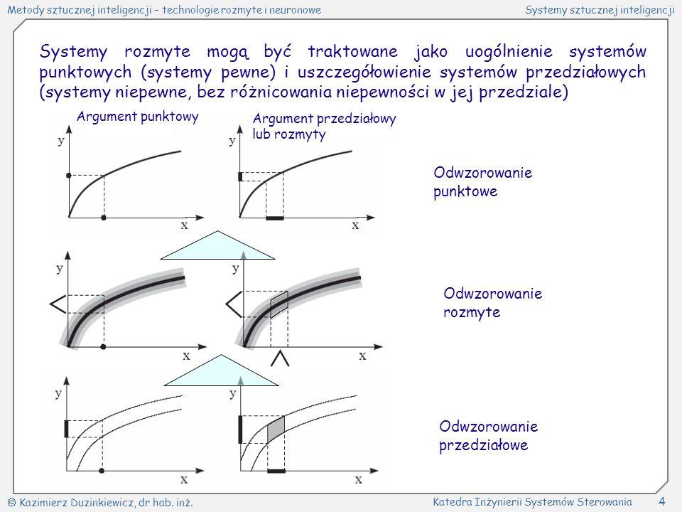 Systemy rozmyte mogą być traktowane jako uogólnienie systemów punktowych (systemy pewne) i uszczegółowienie systemów przedziałowych (systemy niepewne, bez różnicowania niepewności w jej przedziale)