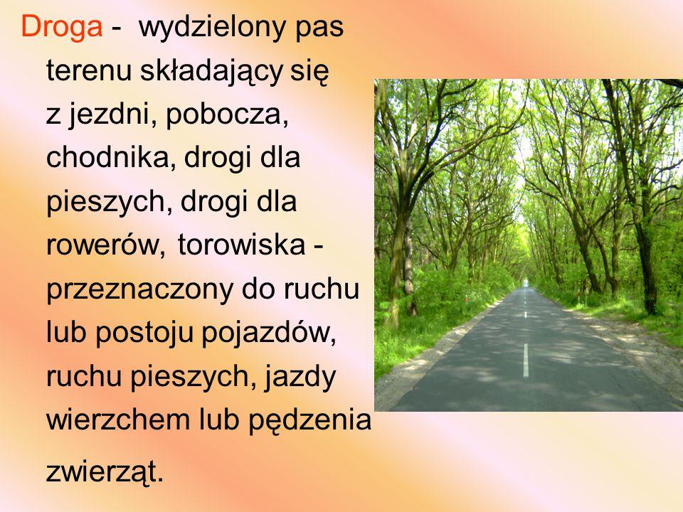 Droga - wydzielony pas terenu składający się z jezdni, pobocza, chodnika, drogi dla pieszych, drogi dla rowerów, torowiska - przeznaczony do ruchu lub postoju pojazdów, ruchu pieszych, jazdy wierzchem lub pędzenia zwierząt.