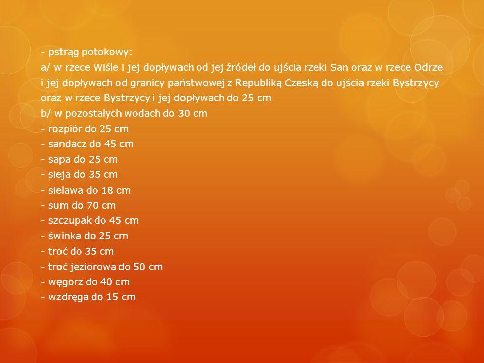 - pstrąg potokowy: a/ w rzece Wiśle i jej dopływach od jej źródeł do ujścia rzeki San oraz w rzece Odrze i jej dopływach od granicy państwowej z Republiką Czeską do ujścia rzeki Bystrzycy oraz w rzece Bystrzycy i jej dopływach do 25 cm b/ w pozostałych wodach do 30 cm - rozpiór do 25 cm - sandacz do 45 cm - sapa do 25 cm - sieja do 35 cm - sielawa do 18 cm - sum do 70 cm - szczupak do 45 cm - świnka do 25 cm - troć do 35 cm - troć jeziorowa do 50 cm - węgorz do 40 cm - wzdręga do 15 cm