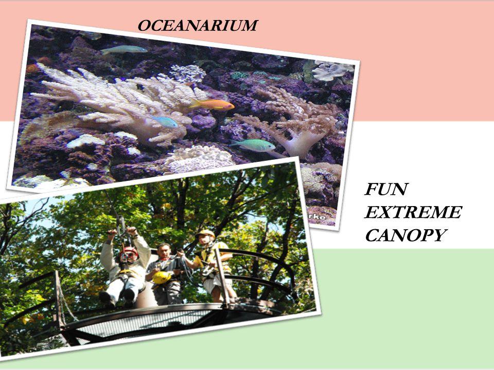 OCEANARIUM FUN EXTREME CANOPY