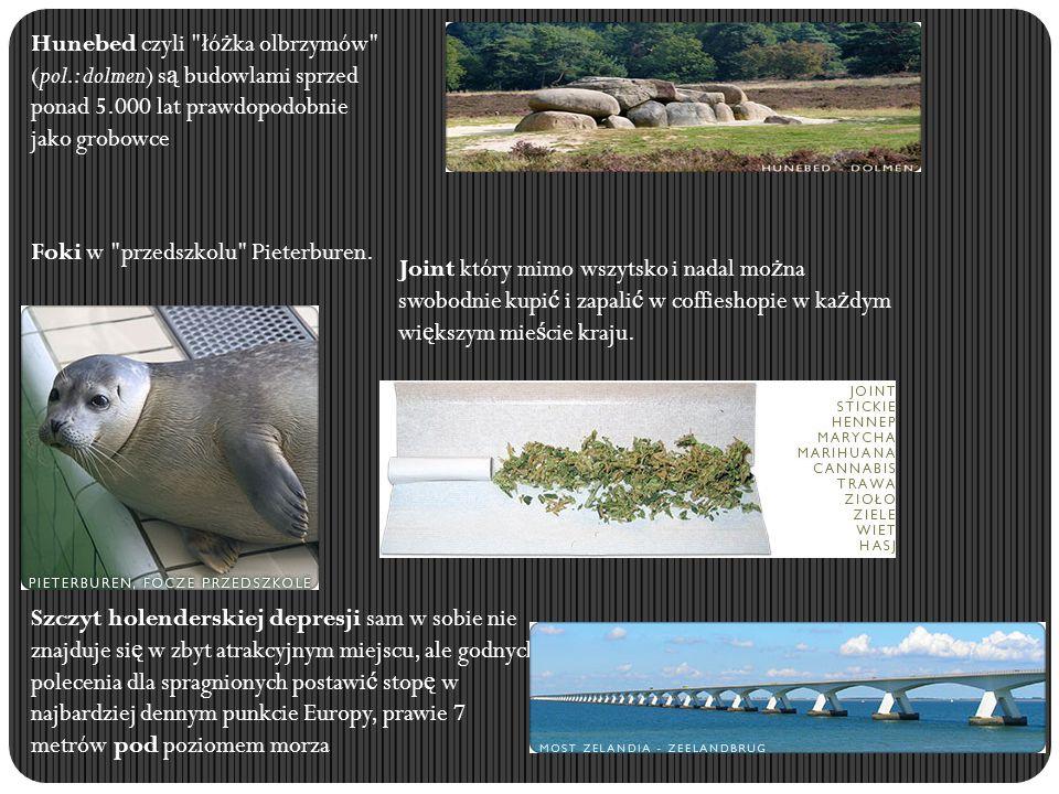 Hunebed czyli łóżka olbrzymów (pol