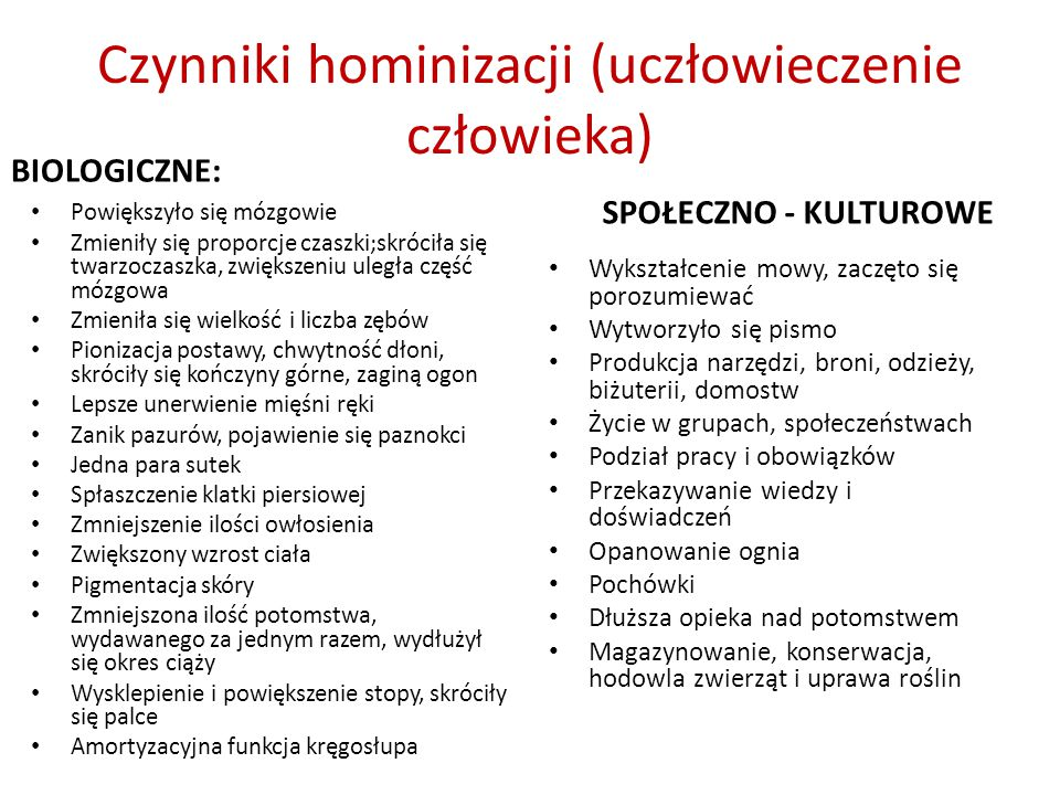 Czynniki hominizacji (uczłowieczenie człowieka)