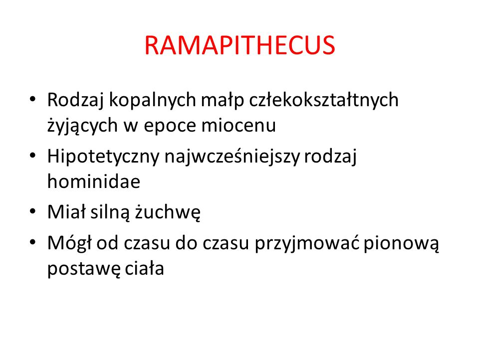 RAMAPITHECUS Rodzaj kopalnych małp człekokształtnych żyjących w epoce miocenu. Hipotetyczny najwcześniejszy rodzaj hominidae.