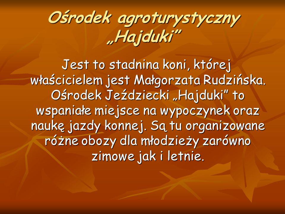 """Ośrodek agroturystyczny """"Hajduki"""