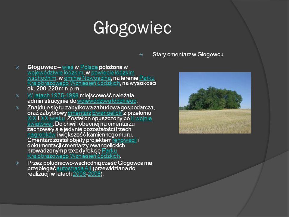 Głogowiec Stary cmentarz w Głogowcu