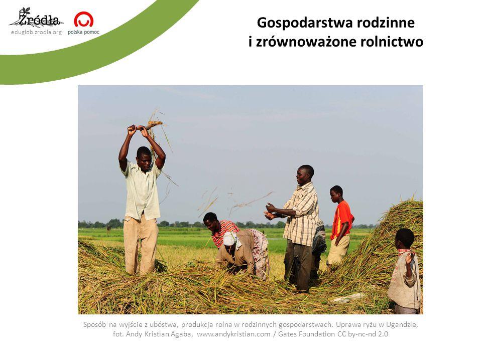Gospodarstwa rodzinne i zrównoważone rolnictwo