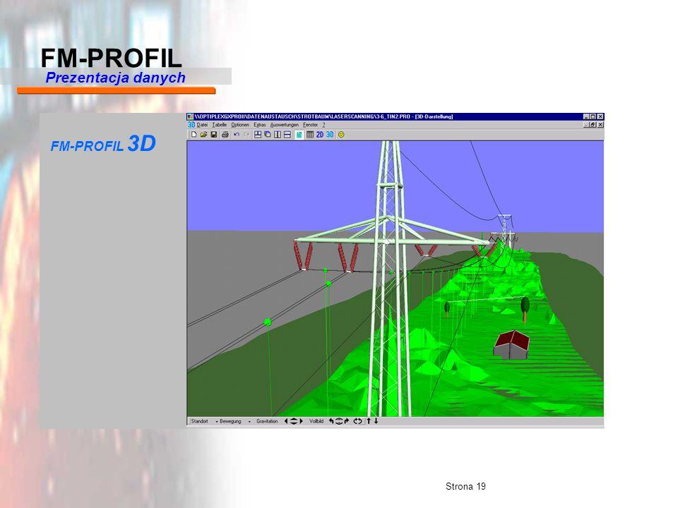 FM-PROFIL Prezentacja danych FM-PROFIL 3D