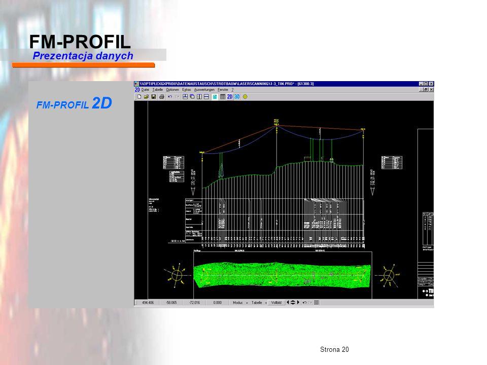 FM-PROFIL Prezentacja danych FM-PROFIL 2D