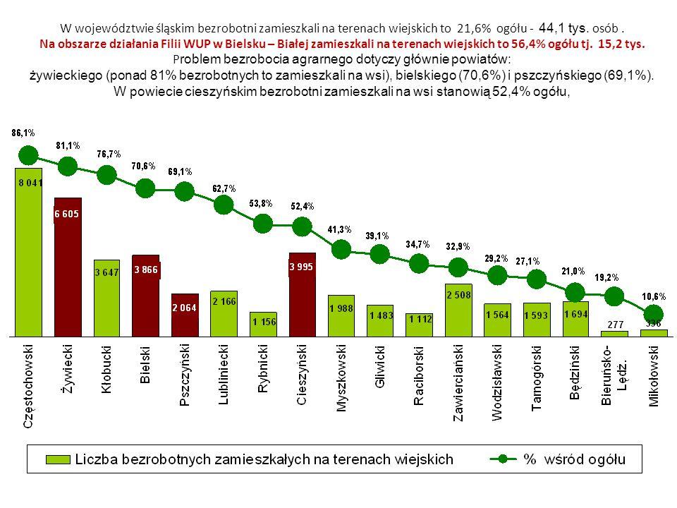 W województwie śląskim bezrobotni zamieszkali na terenach wiejskich to 21,6% ogółu - 44,1 tys.