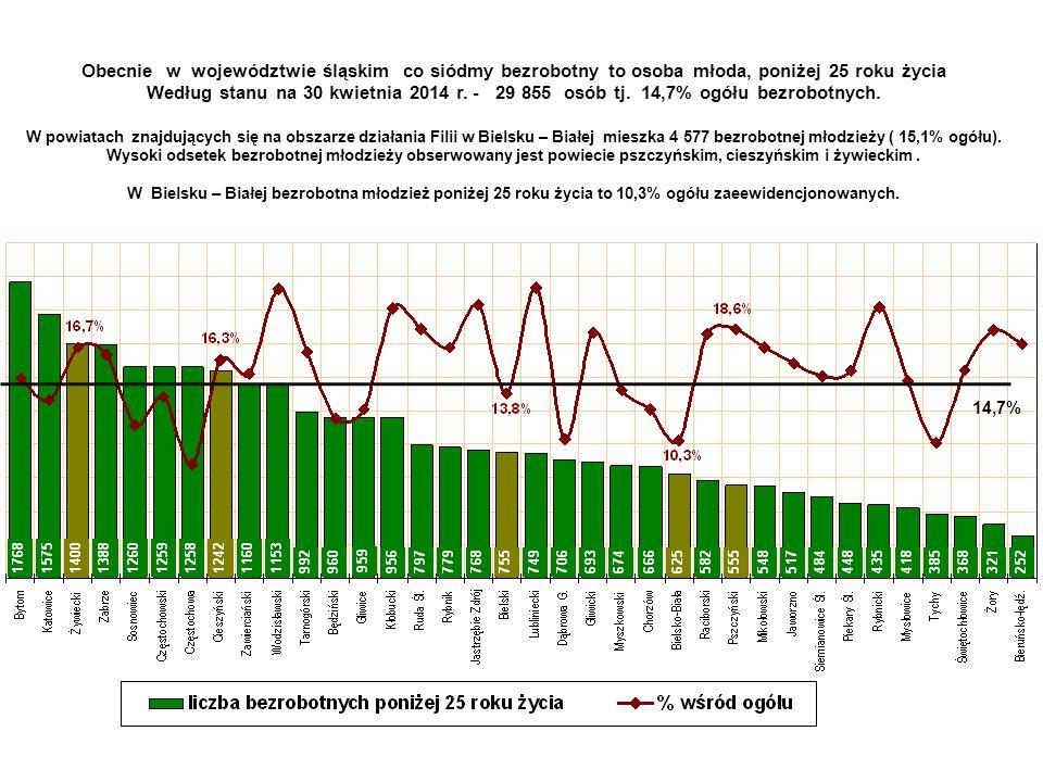 Obecnie w województwie śląskim co siódmy bezrobotny to osoba młoda, poniżej 25 roku życia Według stanu na 30 kwietnia 2014 r. - 29 855 osób tj. 14,7% ogółu bezrobotnych. W powiatach znajdujących się na obszarze działania Filii w Bielsku – Białej mieszka 4 577 bezrobotnej młodzieży ( 15,1% ogółu). Wysoki odsetek bezrobotnej młodzieży obserwowany jest powiecie pszczyńskim, cieszyńskim i żywieckim . W Bielsku – Białej bezrobotna młodzież poniżej 25 roku życia to 10,3% ogółu zaeewidencjonowanych.