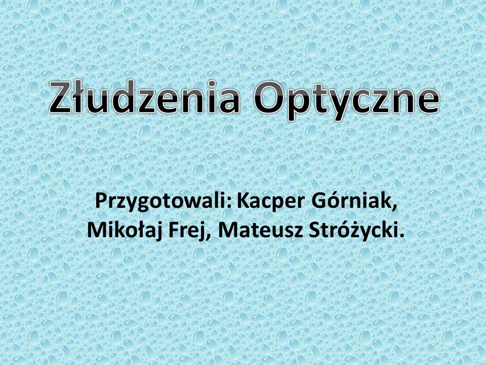 Przygotowali: Kacper Górniak, Mikołaj Frej, Mateusz Stróżycki.