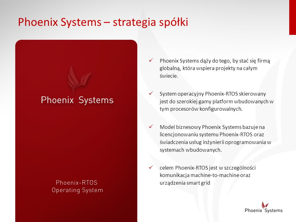 Phoenix Systems – strategia spółki