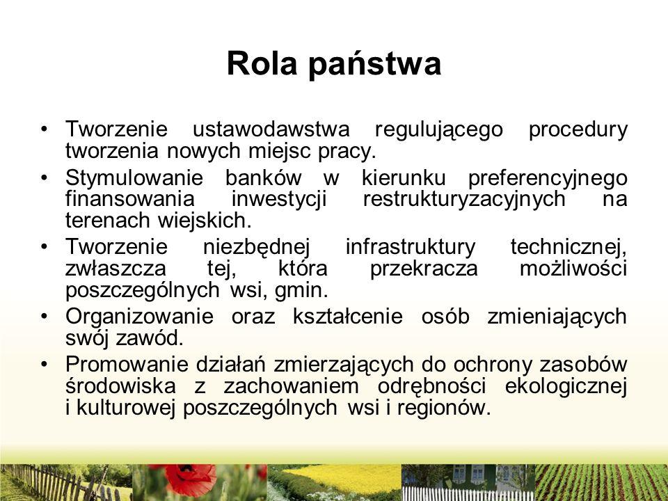 Rola państwa Tworzenie ustawodawstwa regulującego procedury tworzenia nowych miejsc pracy.