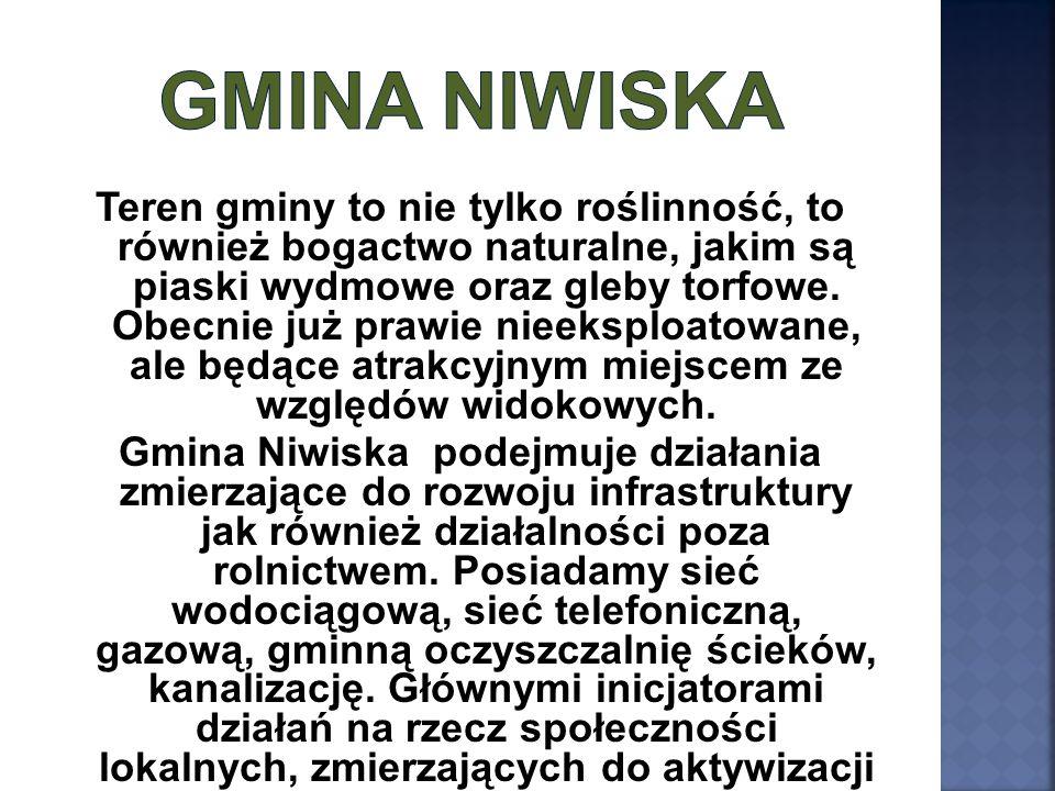 Gmina Niwiska